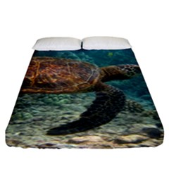 Sea Turtle 3 Fitted Sheet (king Size) by trendistuff