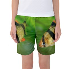 Tiger Barb Women s Basketball Shorts