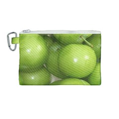Apples 4 Canvas Cosmetic Bag (medium) by trendistuff