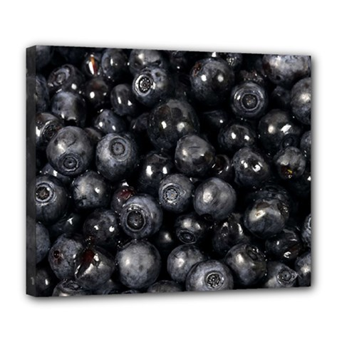 Blueberries 1 Deluxe Canvas 24  X 20   by trendistuff
