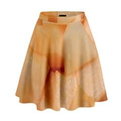 Cantaloupe High Waist Skirt by trendistuff