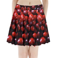 Cranberries 1 Pleated Mini Skirt