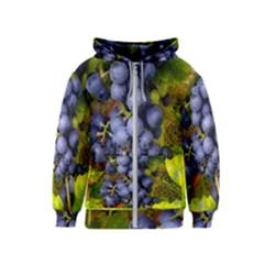 Grapes 1 Kids  Zipper Hoodie