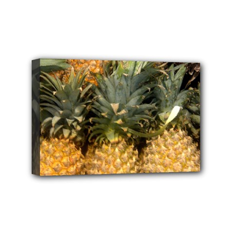 Pineapple 1 Mini Canvas 6  X 4  by trendistuff