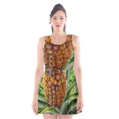 Pineapple 2 Scoop Neck Skater Dress by trendistuff