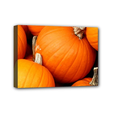 Pumpkins 1 Mini Canvas 7  X 5  by trendistuff