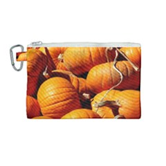 Pumpkins 3 Canvas Cosmetic Bag (medium) by trendistuff