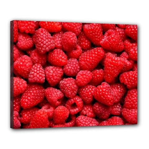 Raspberries 2 Canvas 20  X 16