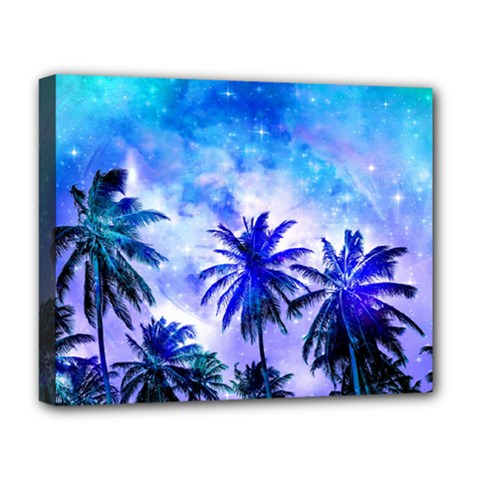 Summer Night Dream Deluxe Canvas 20  X 16   by augustinet
