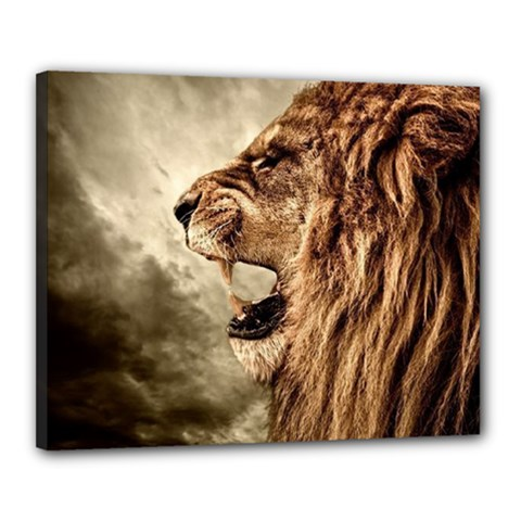 Roaring Lion Canvas 20  X 16