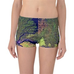Lena River Delta A Photo Of A Colorful River Delta Taken From A Satellite Reversible Boyleg Bikini Bottoms