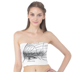 Brain Chart Diagram Face Fringe Tube Top
