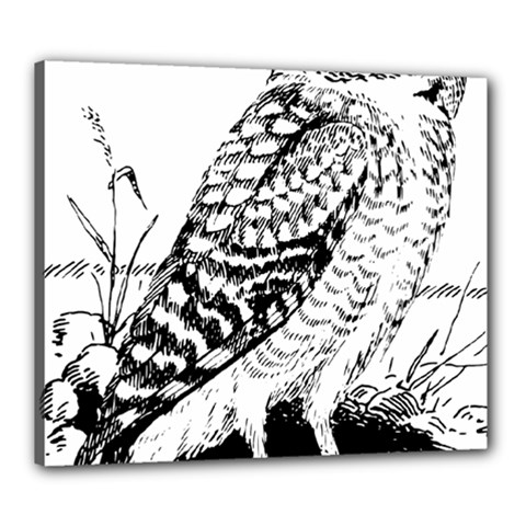 Animal Bird Forest Nature Owl Canvas 24  X 20