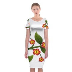 Flower Branch Nature Leaves Plant Classic Short Sleeve Midi Dress