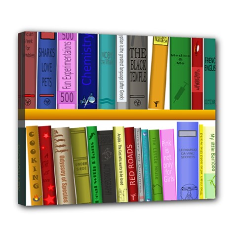 Shelf Books Library Reading Deluxe Canvas 24  X 20