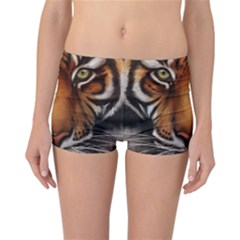 The Tiger Face Reversible Boyleg Bikini Bottoms