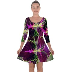 Plant Purple Green Leaves Garden Quarter Sleeve Skater Dress