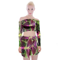 Plant Purple Green Leaves Garden Off Shoulder Top With Mini Skirt Set by Nexatart
