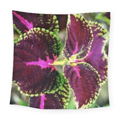 Plant Purple Green Leaves Garden Square Tapestry (large)