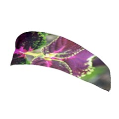 Plant Purple Green Leaves Garden Stretchable Headband