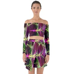 Plant Purple Green Leaves Garden Off Shoulder Top With Skirt Set