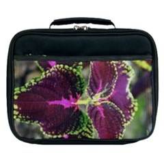 Plant Purple Green Leaves Garden Lunch Bag