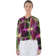 Plant Purple Green Leaves Garden Women s Slouchy Sweat