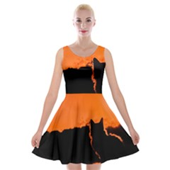 Sunset Cat Shadows Silhouettes Velvet Skater Dresses