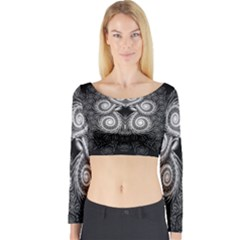 Fractal Filigree Lace Vintage Long Sleeve Crop Top