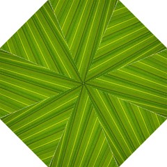 Green Leaf Pattern Plant Golf Umbrellas by Sapixe