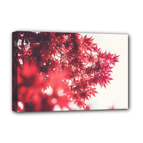 Maple Leaves Red Autumn Fall Deluxe Canvas 18  X 12   by Sapixe