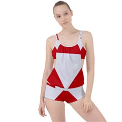 Roundel Of Austrian Air Force  Boyleg Tankini Set