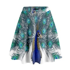 Peacock Bird Peacock Feathers High Waist Skirt by Sapixe