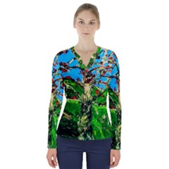 Coral Tree 2 V Neck Long Sleeve Top