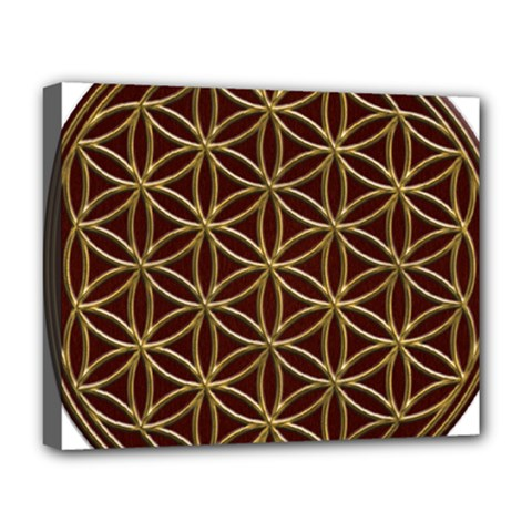 Flower Of Life Deluxe Canvas 20  X 16   by Samandel