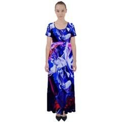 Cabin In The Mountain 1 High Waist Short Sleeve Maxi Dress