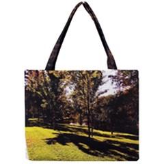 Highland Park 17 Mini Tote Bag by bestdesignintheworld