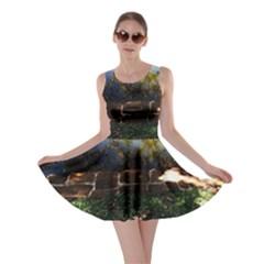 Highland Park 10 Skater Dress