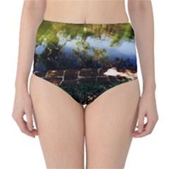 Highland Park 10 High Waist Bikini Bottoms