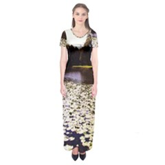 Highland Park 6 Short Sleeve Maxi Dress