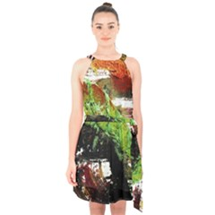 Collosium   Swards And Helmets 3 Halter Collar Waist Tie Chiffon Dress