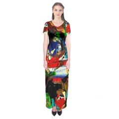 Catalina Island Not So Far 5 Short Sleeve Maxi Dress