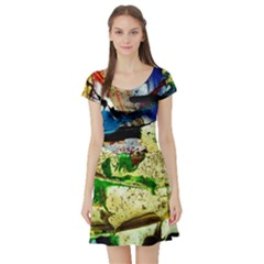 Catalina Island Not So Far 4 Short Sleeve Skater Dress