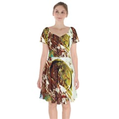 Doves Matchmaking 3 Short Sleeve Bardot Dress