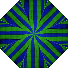 Stripes Hook Handle Umbrellas (medium) by bestdesignintheworld
