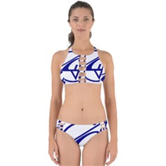 Sukhoi Aircraft Logo Perfectly Cut Out Bikini Set