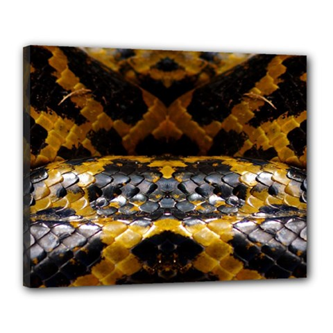 Textures Snake Skin Patterns Canvas 20  X 16  by Sapixe