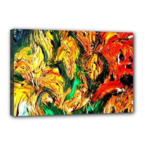 Tiger Lillis   1 Canvas 18  X 12  by bestdesignintheworld