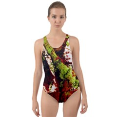 Collosium   Swards And Helmets 4 Cut Out Back One Piece Swimsuit