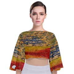 The Framework Drawing Color Texture Tie Back Butterfly Sleeve Chiffon Top